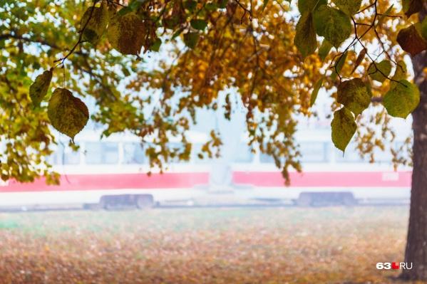Осень вступает в свои права