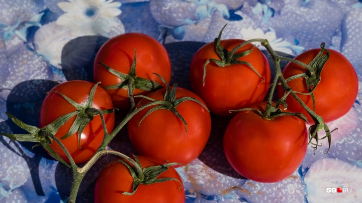 В Прикамье капуста за месяц подорожала на 40%, а помидоры — на 30%