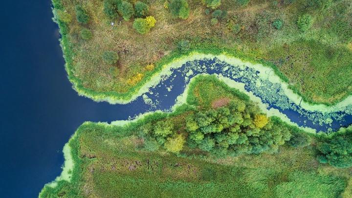 Фото реки Чусовой, которая с воздуха напоминает аорту, победило в конкурсе «Википедии»