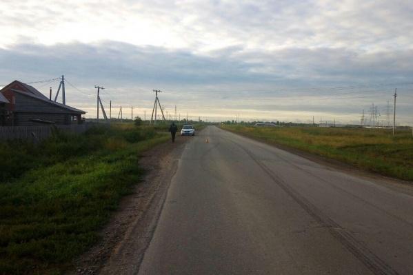 Место аварии в селе Толмачёво