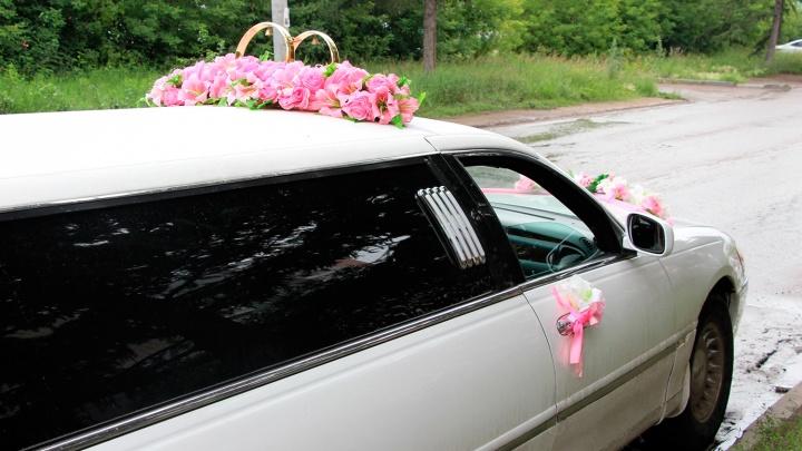 Сторож забрал 200 тысяч из свадебной шкатулки, которую молодожёны случайно забыли на свалке