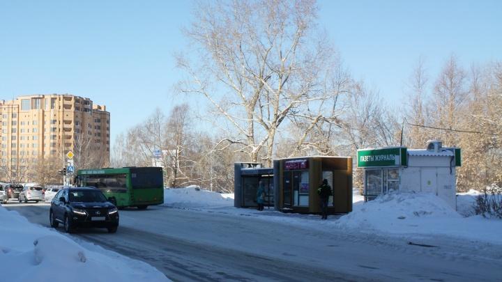Сквер всё-таки будет: Росимущество отдало городским властям пустырь в Академгородке