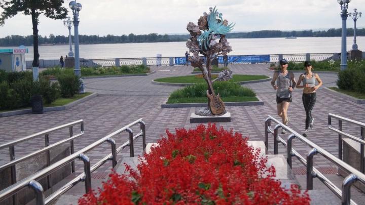 На набережной Волги в Самаре установят памятник клёну