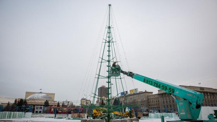 Видео: на площади Ленина начали собирать новогоднюю ёлку