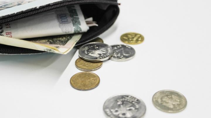 Доходность 16% и лишняя «премия»: что нужно знать челябинцам, которые хотят стать пайщиками