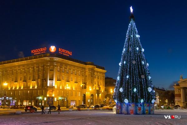 Волгоградская ёлка на два метра ниже ростовской и втрое меньше красноярской