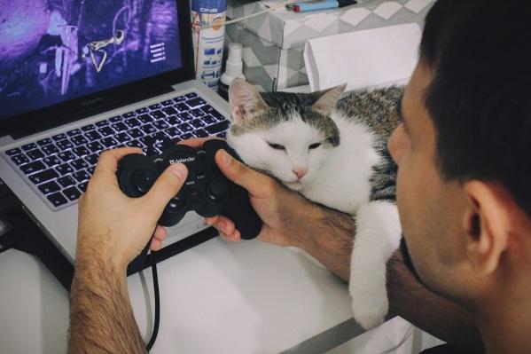 Ночью в интернете «сидят» геймеры и любители сериалов