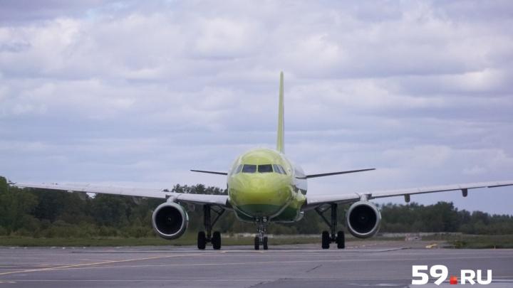 Из Перми в Западную Сибирь: авиаперевозчик открыл три новых направления