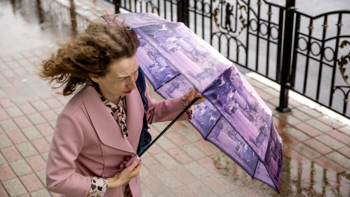 Непогода задержится: синоптики предупредили ярославцев о снеге и порывистом ветре