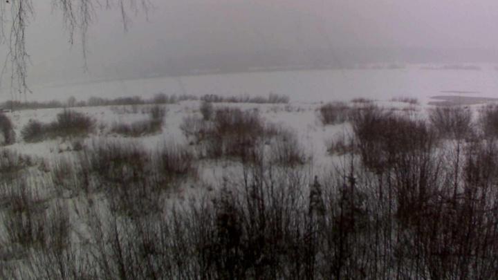 Архангельские бизнесмены установили онлайн-камеру собственной разработки на переправе через Пинегу