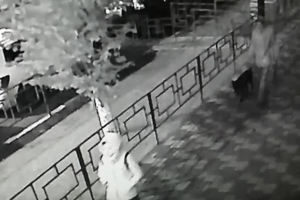 Мужчину видели рано утром с собакой