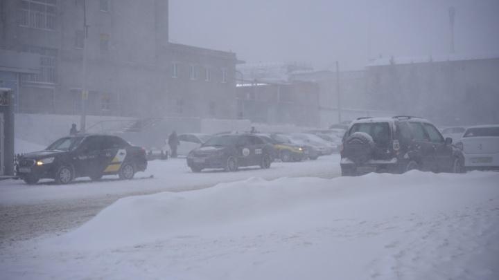 Две дороги из Казахстана в Омскую область закрыли из-за метели