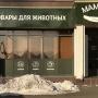 Время порадовать своего питомца: «МамаZoo» дарит скидки весь декабрь в честь открытия магазина