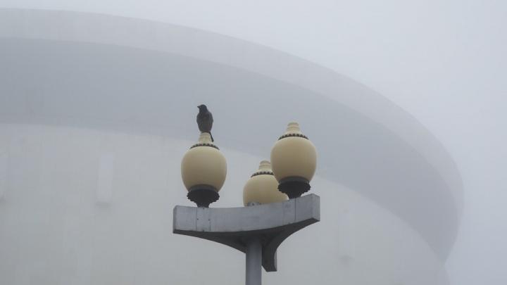 Снег, туман, дождь и гололедица: в Волгограде градусники застынут на «нуле»