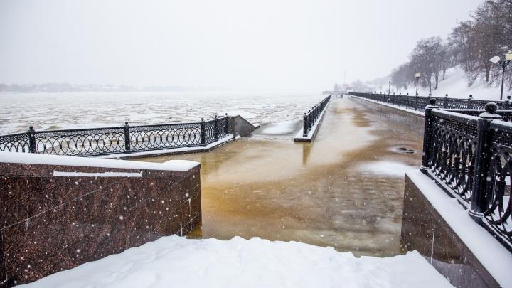 В Ярославле Волга вышла из берегов: в МЧС рассказали, что будет дальше