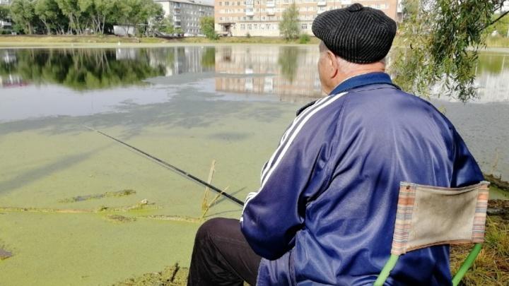 В мэрии объяснили, почему благоустройство озера Кирпичка и бульвара Мартынова не завершилось в срок