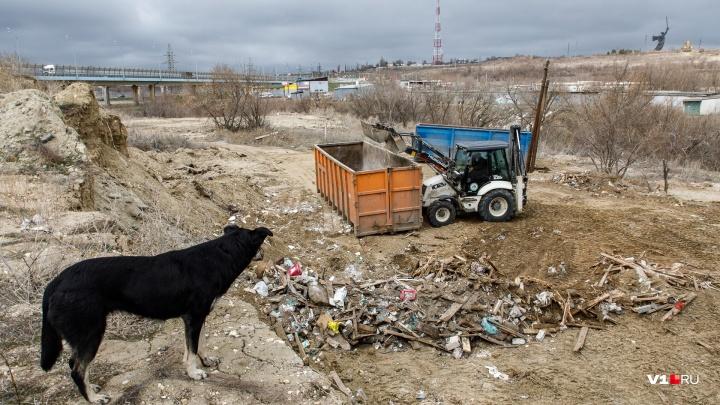 «Решили не тратиться»: рядом с «танцующим» мостом Волгограда выросла гора строительного мусора