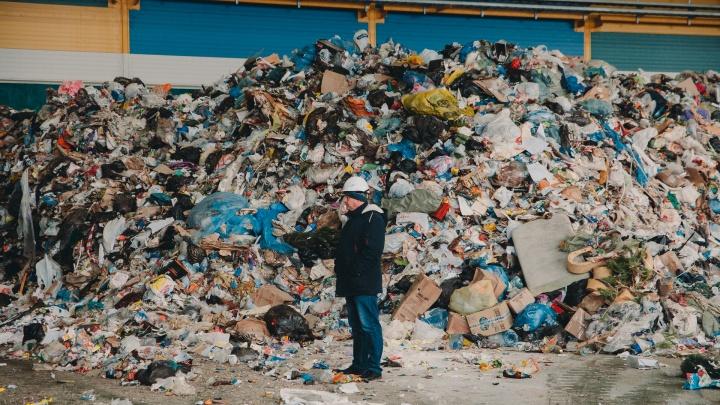 Сколько мусора производят жители тюменских многоэтажек. Считаем на примере одного жилого комплекса