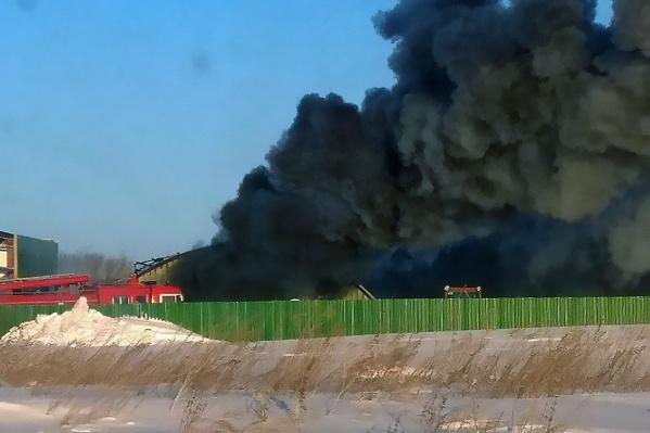 На заводе уверены, что склад с вторсырьём подожгли