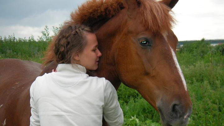 О том, как здорово дружить с лошадками
