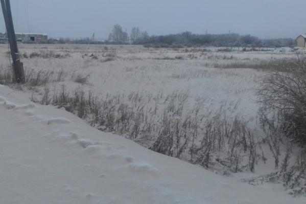 Снег в посёлке Введенское покрыт серо-жёлтым налётом