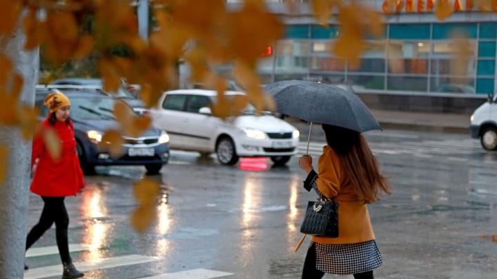 Штормовое предупреждение: в Башкирии будет царить порывистый ветер