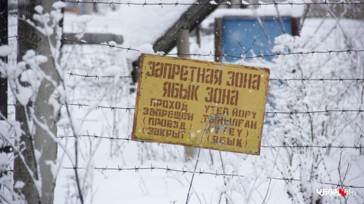 Снаряды на территории бывшей военной базы под Уфой, где гибнут люди, могут пролежать еще 5–7 лет