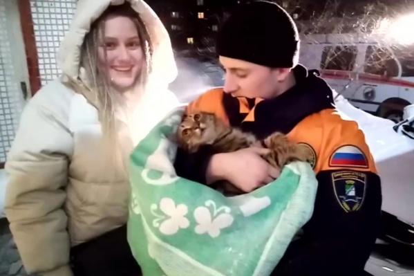 Спасатели сняли операцию по вызволению кошки на видео