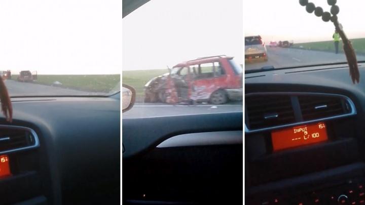 На трассе Тюмень — Омск иномарка врезалась в большегруз DAF. Есть погибший