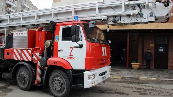 Омских медиков оштрафовали из-за поджога сухой травы возле поликлиники и роддома