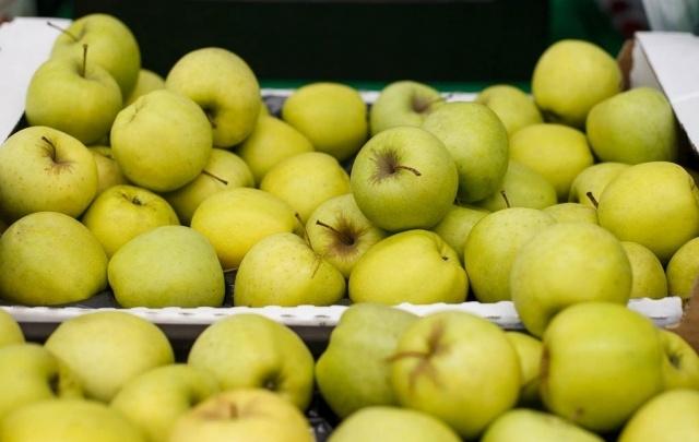 На полигоне в Кургане уничтожили 10 тонн санкционных овощей и фруктов