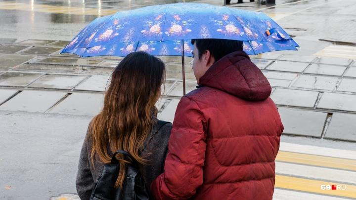 МЧС предупреждает о дожде и сильном ветре в Прикамье