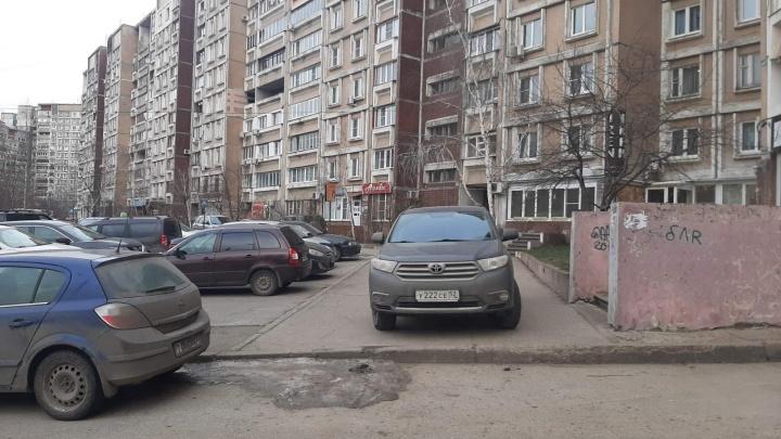Короли парковки украшают газоны в Нижнем Новгороде