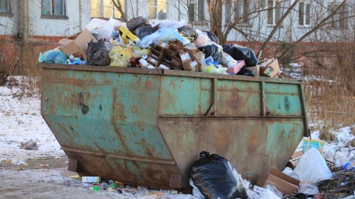 Тариф установлен: сколько жители Архангельской области с января будут платить за вывоз мусора?