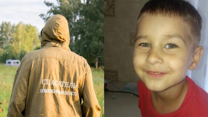 Потерялся в лесу: новосибирские волонтёры выехалив Омск на поиски трёхлетнего ребёнка