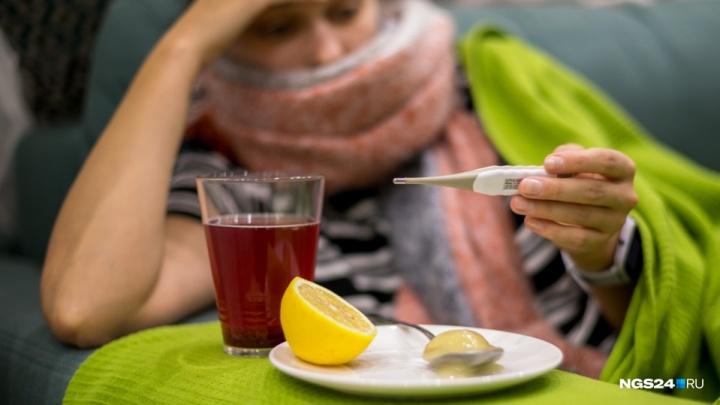 Красноярск оказался в лидерах по числу заболевших гриппом и ОРВИ в стране