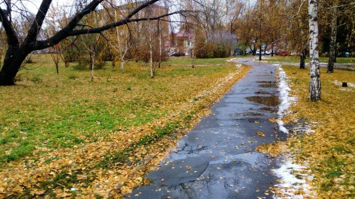 Омские синоптики пообещали тёплую погоду до середины ноября