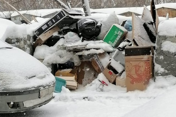 Новосибирцы завалили мусором дворы, а потом фотографиями этого мусора — соцсети
