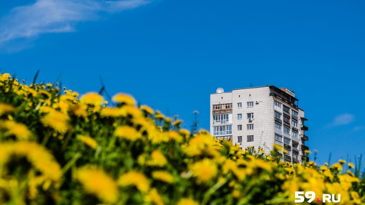Тепло и почти без осадков: рассказываем о погоде в Перми на конец недели