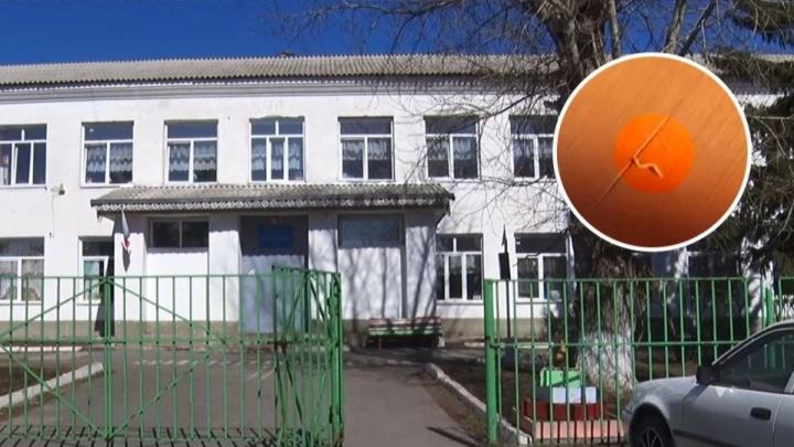 В Роспотребнадзоре выяснили, откуда появились черви в школе под Ачинском