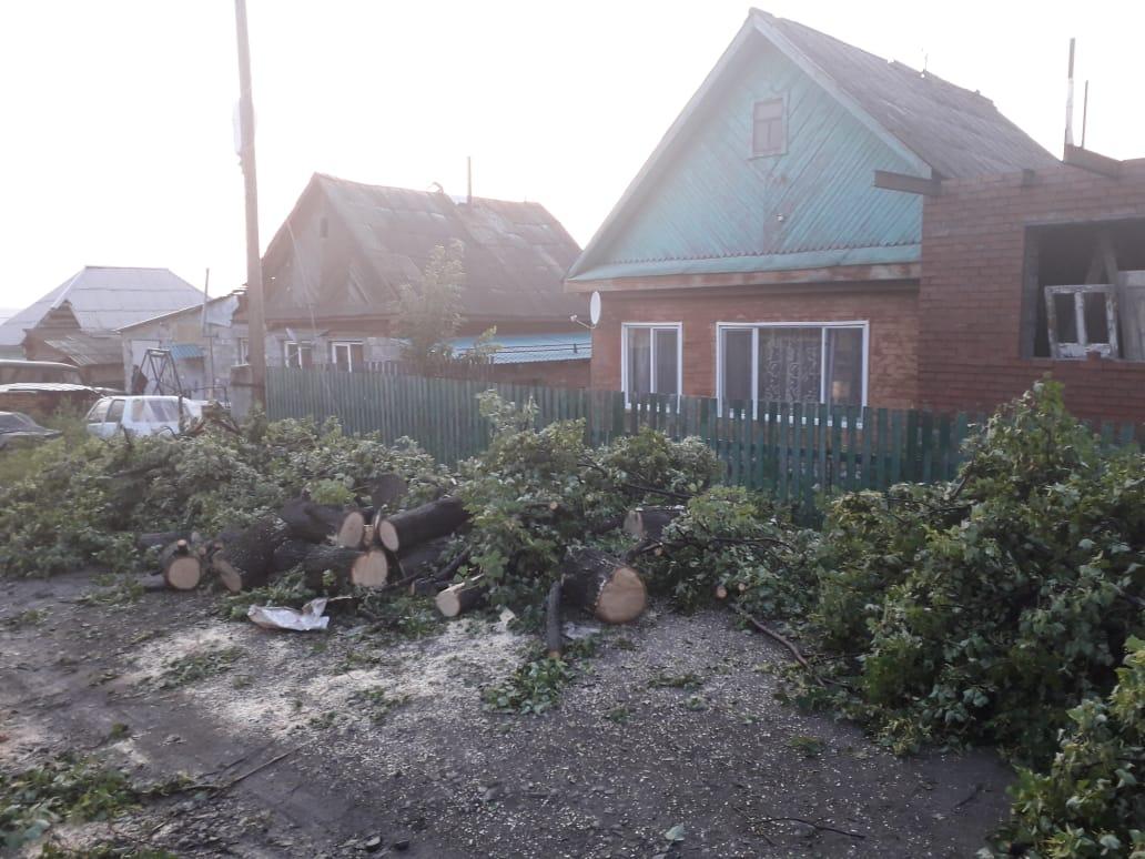 Сильный ветер сорвал покрытие крыш и повалил деревья