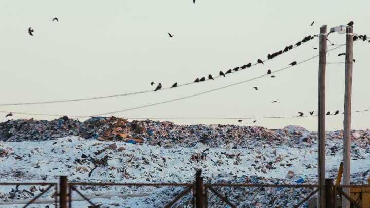С новым тарифом: рассказываем, на сколько больше жители Тюмени будут платить за мусор с 1 января