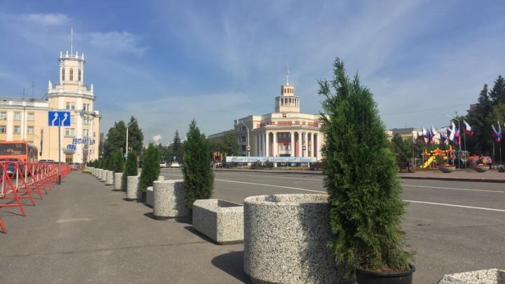 Центр Кемерово украсили вечнозелёные деревья в вазонах