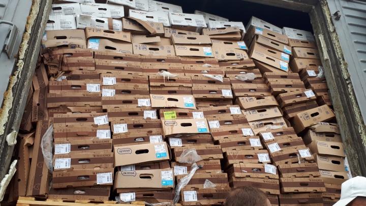 Несколько тонн странной курятины запретили к продаже. Назначена проверка