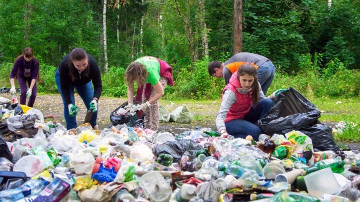 Отметь свалку на карте, и она исчезнет: в Ярославле для ленивых придумали, как избавиться от мусора