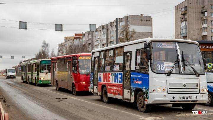 Сколько зарабатывают частные перевозчики на ярославцах: цифры