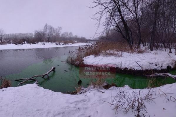 Зелёная вода напугала жителей ЧМЗ