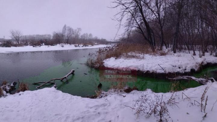В Минэкологии объяснили, почему вода в реке Миасс на севере Челябинска стала ядовито-зелёной