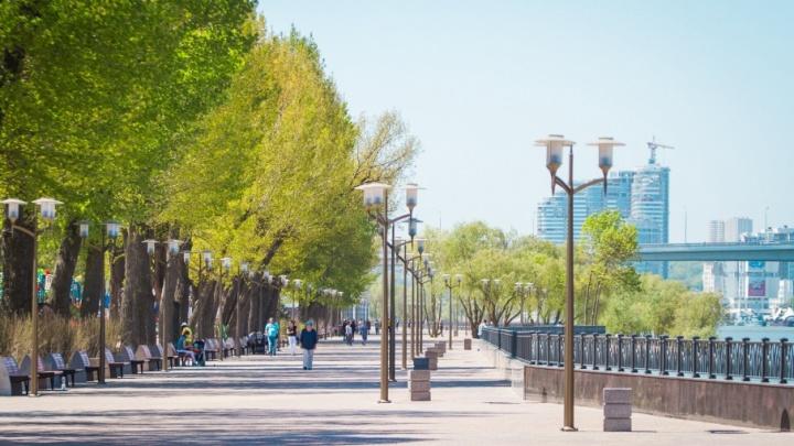 Теплые и солнечные выходные прогнозируют синоптики в Ростове