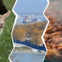Связан ли Батайск с французами? Угадываем, как появились названия поселений Ростовской области